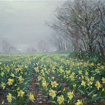 Misty Light and Daffodils, Ludgvan