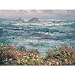 Foxgloves and Sorrel, towards Gurnard's Head